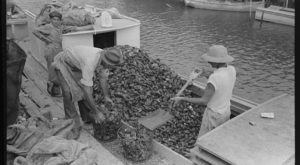 These 13 Rare Photos Show Louisiana's Oyster History Like Never Before