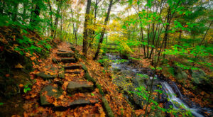 The Hiking Trail Hiding In Maine That Will Transport You To Another World
