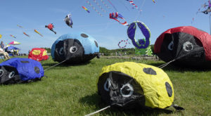This Incredible Kite Festival In Rhode Island Is A Must-See