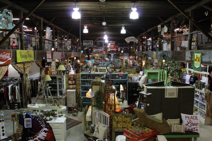 The Lucky Rabbit The Unbelievable Thrift Store In
