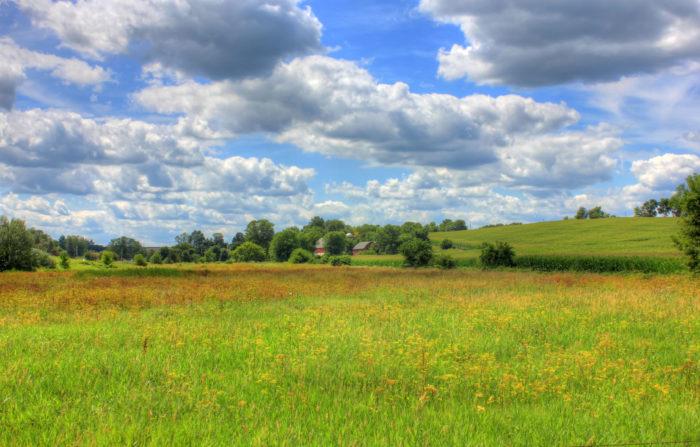 10 Beautiful Photos Of Illinois Countryside