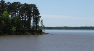 There's Nothing Better Than A Day Trip To Mississippi's Most Underrated Lake