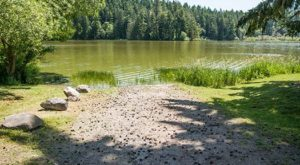 You May Not Want To Swim In This Washington Lake This Summer Due To A Dangerous Discovery