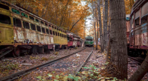 There's A Mass Trolley Grave Hiding Deep In The Forest Of Pennsylvania And Most Don't Know It Exists