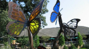 You'll Want To Plan A Summer Day Trip To Nebraska's Magical Butterfly House