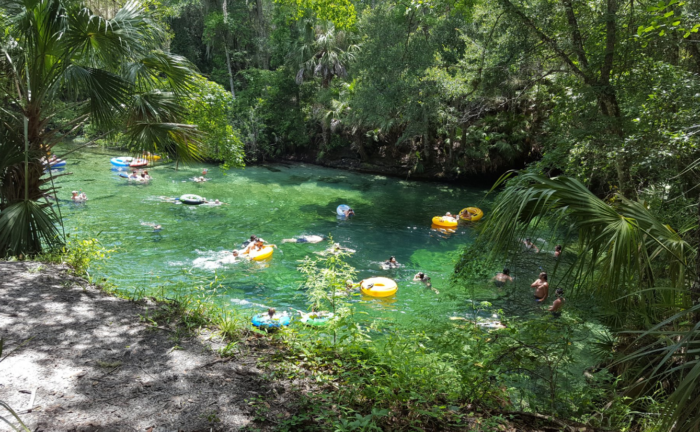 Lazy Rivers In Florida That Are Perfect For Tubing On A Summers Day - Rivers in florida