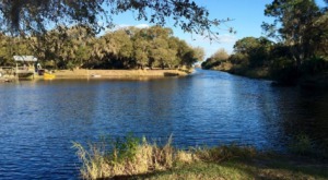 The Underrated Florida Lake That's Perfect For A Summer Day