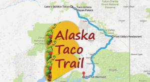 Your Tastebuds Will Go Crazy For This Amazing Taco Trail In Alaska