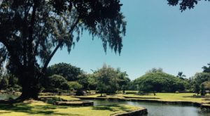 The Winding Path Through This Hawaii Park Is Positively Enchanting