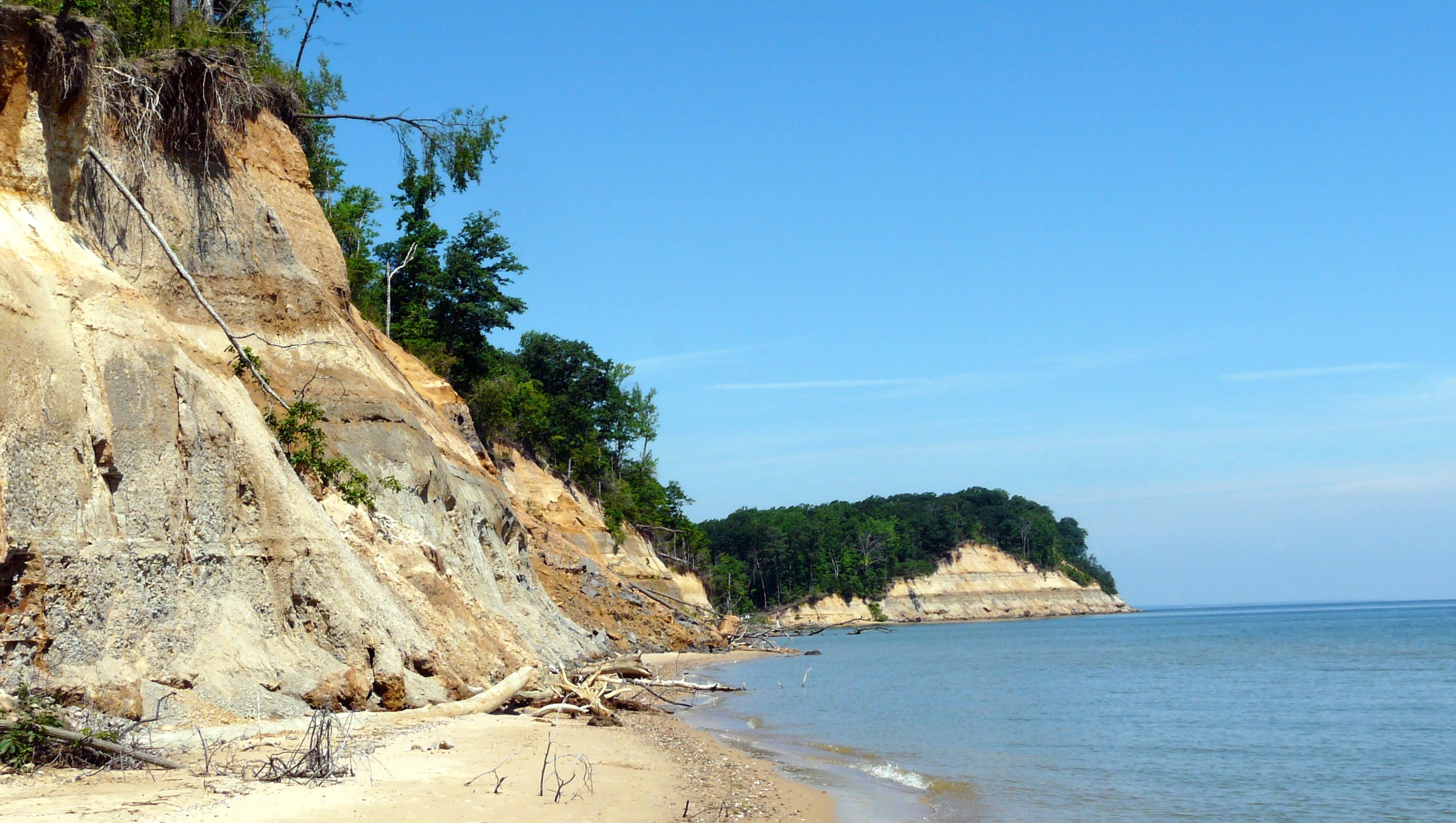 calvert cliffs beach in maryland is one of the most unique in the world