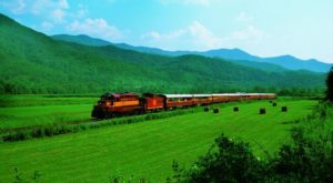 You'll Absolutely Love A Ride On North Carolina's Majestic Mountain Train This Summer