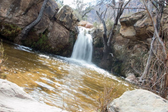 This Gorgeous Waterfall Swimming Hole In Nevada Will Make
