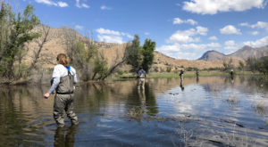 The 11 Best Fly Fishing Spots In Nevada Only Locals Know About