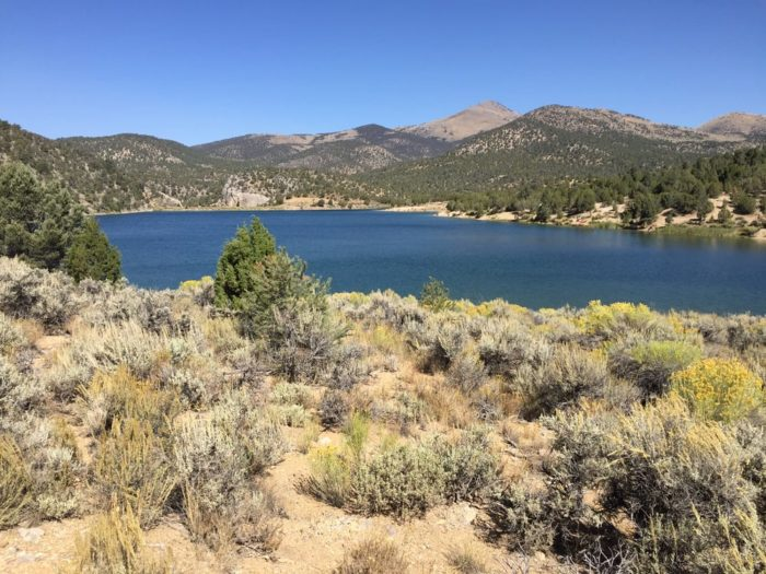 11 glorious campgrounds in nevada where no reservation is for Scotts flat lake fishing