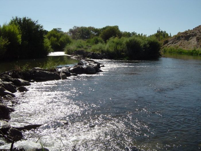The 11 best fly fishing spots in nevada only locals know for Walker river fishing