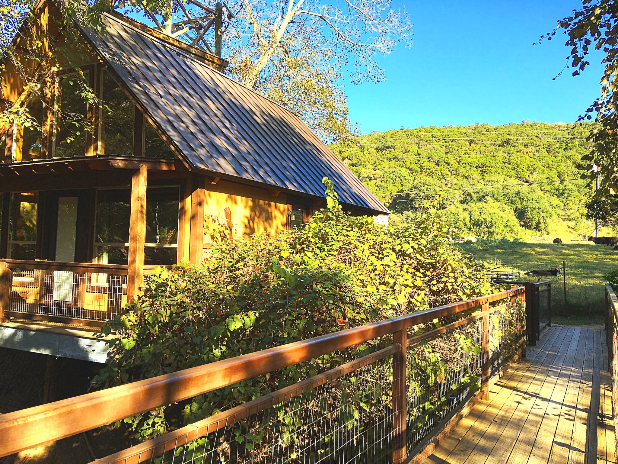 Stay In A Treehouse Right On The Guadalupe River In Texas