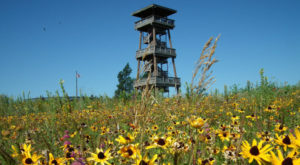The Eagle's Eye View From This South Dakota Tower Is Positively Breathtaking