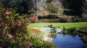 These 10 Places In Alabama Are Absolutely Perfect For An Afternoon Stroll