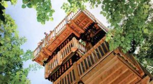 This Treehouse in Nebraska Will Give You An Unforgettable Experience