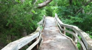 9 Amazing Kansas Hikes Under 3 Miles You'll Absolutely Love