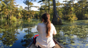 The North Carolina Park That Will Make You Feel Like You Walked Into A Fairy Tale