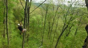 The Epic Zipline Near Cincinnati That Will Take You On An Adventure Of A Lifetime