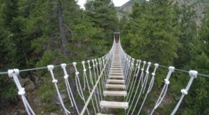 9 Amazing Treetop Adventures You Can Only Have In Denver