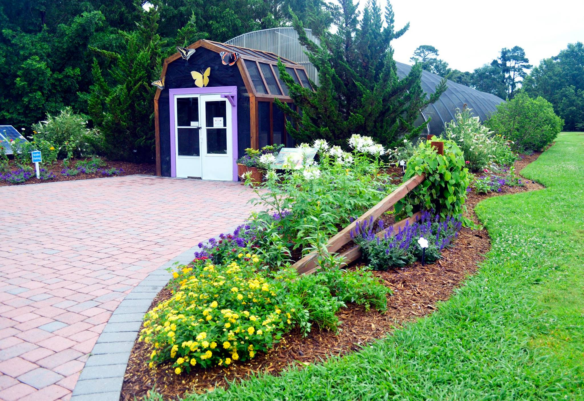 Garden Centre: Visit The Butterfly House At Norfolk Botanical Gardens In