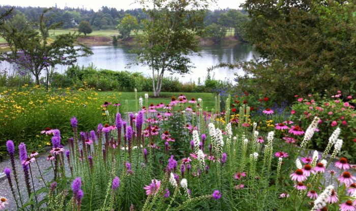 The Charlotte Rhoades Park Is A Coastal Butterfly Habitat Located In  Downeast Maine.