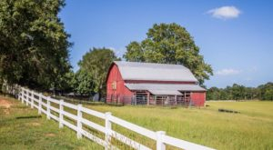 12 Picturesque Farms That Prove Just How Charming Rural Mississippi Really Is