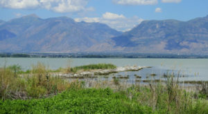 You May Not Want To Swim In This Utah Lake This Summer Due To A Dangerous Discovery