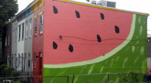 14 Incredible DC Murals To See Around The City
