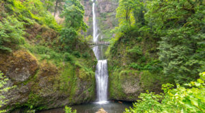 A Ride On Portland's Gorge Express Will Take You Straight To A Stunning Waterfall