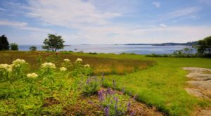 The 13 Most Incredible Natural Attractions In Massachusetts That Everyone Should Visit
