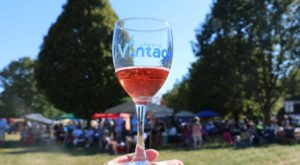 The Epic Wine Festival In Illinois You Don't Want To Miss This Year