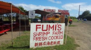 The Tiny Town In Hawaii That's The Next Shrimp Capital Of The World