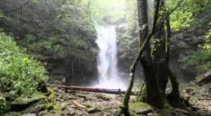 The 10 Most Incredible Natural Attractions In Nashville That Everyone Should Visit