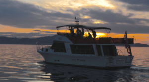 The Sunset Lake Cruise That Will Make Your Utah Summer Complete
