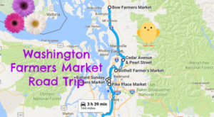 The Ultimate Washington Farmers Market Road Trip Will Make Your Summer Complete