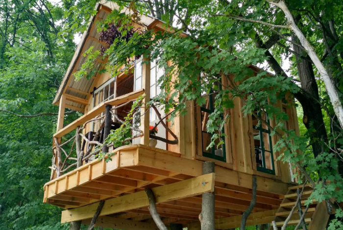 9 Amazing Treetop Adventures You Can Only Have In New York