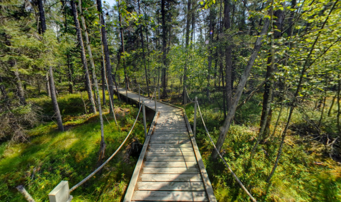 One of the best things you can do is hike its many trails. In particular the half-mile Touch the Earth Trail takes you under a thick canopy of trees. & The Stomach-Dropping Canopy Walk You Can Only Find In Minnesota