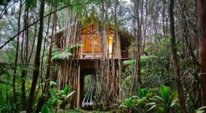 Sleep Underneath The Forest Canopy At This Epic Treehouse In Hawaii