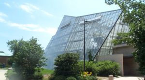 You'll Want To Plan A Day Trip To Cleveland's Magical Butterfly House