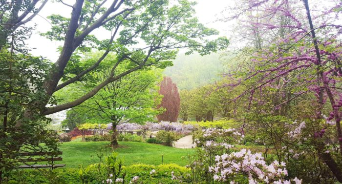 Brookside Was Founded In 1969 And They Feature Several Different Gardens  Including The Azalea Garden, Rose Garden, Japanese Garden And Butterfly  Garden.