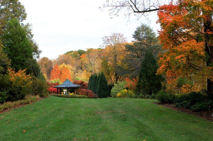 Brookside Gardens Is DC\'s Fairy Tale Park