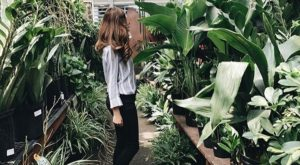 The One Magical Place That's Like Nashville's Own Garden Of Eden