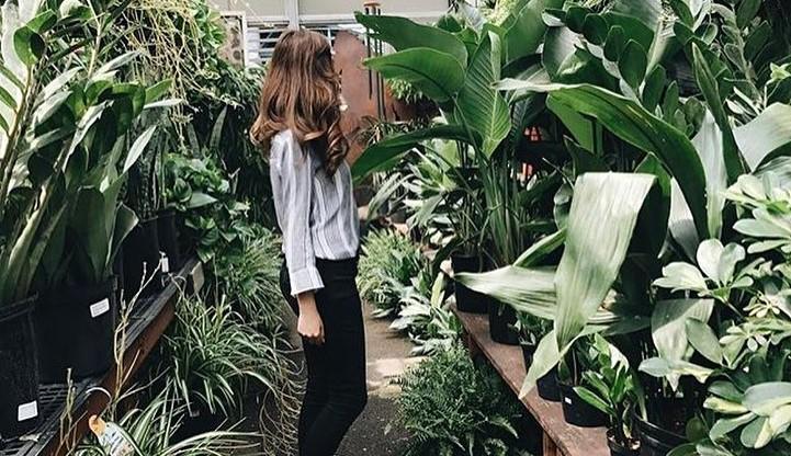Gardens Of Babylon In Nashville Is Like The Garden Of Eden