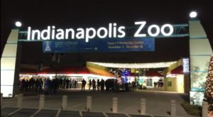 This Epic Zoo in Indiana Was Just Named One of the Best in the Country