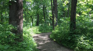 If There Are Only 5 Hikes You Ever Do In Iowa, Make Them These