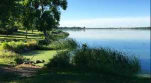 You May Not Want To Swim In These 3 Nebraska Lakes This Summer Due To A Dangerous Discovery